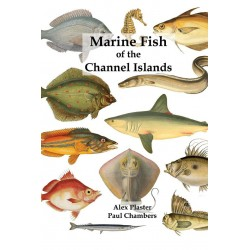 Marine Fish of the Channel Islands - Book